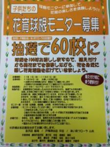 球根モニター ポップ2014秋