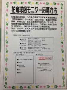 秋球根モニター 応募方法ポップ 2014
