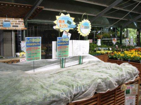 20070412-野菜売場 夜.JPG